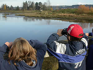 Birdwatching at the Courtenay Airpark